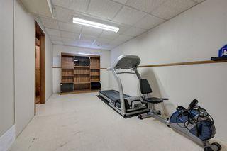 Photo 29: 17312 92 Avenue in Edmonton: Zone 20 House for sale : MLS®# E4187131