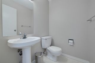 Photo 25: 17312 92 Avenue in Edmonton: Zone 20 House for sale : MLS®# E4187131