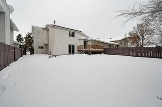 Photo 31: 17312 92 Avenue in Edmonton: Zone 20 House for sale : MLS®# E4187131