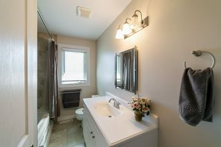 Photo 16: 36 St. Vital Avenue: St. Albert House for sale : MLS®# E4172698
