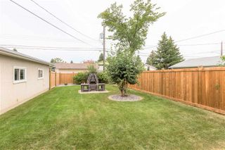 Photo 44: 15919 88B Avenue in Edmonton: Zone 22 House for sale : MLS®# E4212881