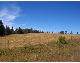 Photo 9: 3039 LIKELY Road: 150 Mile House House for sale (Williams Lake (Zone 27))  : MLS®# N195230