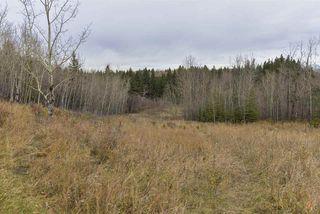 Photo 37: 243 RUNNING CREEK Lane in Edmonton: Zone 16 House for sale : MLS®# E4180453