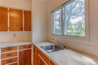 Photo 26: 621 Constance Ave in Esquimalt: Es Esquimalt Quadruplex for sale : MLS®# 842594