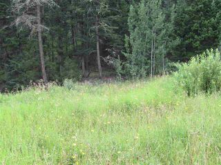 Main Photo: LOT A FIRDALE Drive in Williams Lake: Williams Lake - Rural North Land for sale (Williams Lake (Zone 27))  : MLS®# R2485053