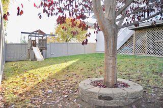 Photo 31: 419 DAVENPORT Drive: Sherwood Park House for sale : MLS®# E4217832