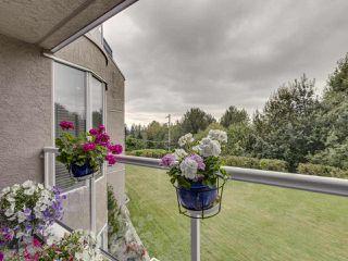 Photo 24: 203 999 BERKLEY ROAD in North Vancouver: Blueridge NV Condo for sale : MLS®# R2518295