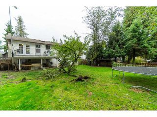 Photo 18: 9159 APPLEHILL Crescent in Surrey: Queen Mary Park Surrey House for sale : MLS®# R2407744