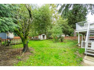 Photo 16: 9159 APPLEHILL Crescent in Surrey: Queen Mary Park Surrey House for sale : MLS®# R2407744