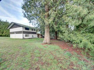 Photo 3: 7761 FAWN Road in Halfmoon Bay: Halfmn Bay Secret Cv Redroofs House for sale (Sunshine Coast)  : MLS®# R2428234
