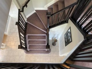 Photo 23: 85 DANFIELD Place: Spruce Grove House for sale : MLS®# E4206587
