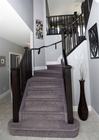 Photo 22: 85 DANFIELD Place: Spruce Grove House for sale : MLS®# E4206587