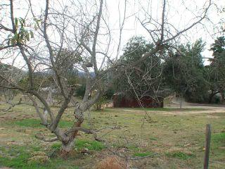 Photo 8: RAMONA House for sale : 3 bedrooms : 22969 Vista Ramona