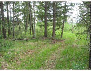 Photo 4: LOT 4 WATCH LAKE Road in Lone_Butte: Lone Butte/Green Lk/Watch Lk Land for sale (100 Mile House (Zone 10))  : MLS®# N193163