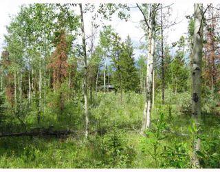 Photo 2: LOT 4 WATCH LAKE Road in Lone_Butte: Lone Butte/Green Lk/Watch Lk Land for sale (100 Mile House (Zone 10))  : MLS®# N193163