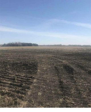 Photo 2: TWP 562 RR 263: Rural Sturgeon County Rural Land/Vacant Lot for sale : MLS®# E4196401