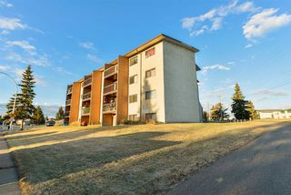 Photo 30: 106 57 BROWN Street: Stony Plain Condo for sale : MLS®# E4219469