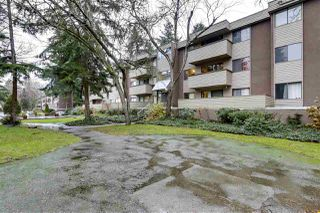 "Photo 22: 22 2433 KELLY Avenue in Port Coquitlam: Central Pt Coquitlam Condo for sale in ""Orchard Valley"" : MLS®# R2522699"