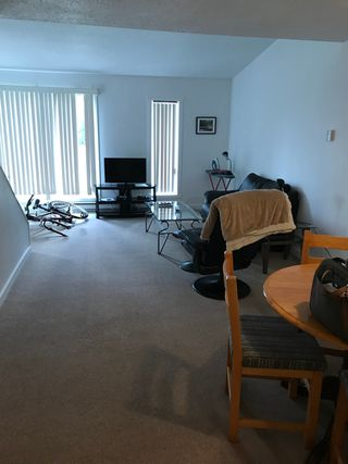 Photo 4: 9130 Granville Street in Port Hardy: Townhouse for sale