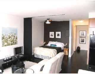 "Photo 2: 1605 501 PACIFIC Street in Vancouver: Downtown VW Condo for sale in ""THE 501"" (Vancouver West)  : MLS®# V730991"