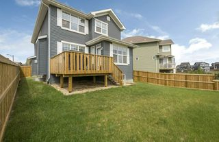 Photo 49: 584 Orchards Boulevard in Edmonton: Zone 53 House for sale : MLS®# E4198664