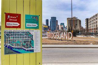 Photo 23: 527 955 MCPHERSON Road NE in Calgary: Bridgeland/Riverside Apartment for sale : MLS®# C4305151