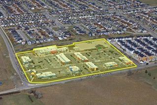 Photo 44: 90 SILVERADO SKIES Crescent SW in Calgary: Silverado Detached for sale : MLS®# A1021309