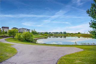 Photo 47: 90 SILVERADO SKIES Crescent SW in Calgary: Silverado Detached for sale : MLS®# A1021309