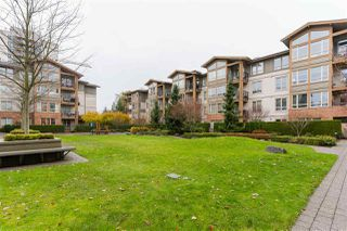 """Photo 20: 316 1111 E 27TH Street in North Vancouver: Lynn Valley Condo for sale in """"Branches"""" : MLS®# R2523279"""