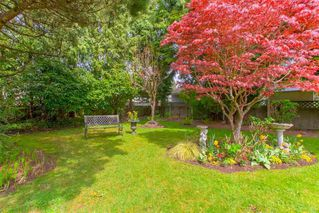 """Photo 4: 1383 GROVER Avenue in Coquitlam: Central Coquitlam House for sale in """"CENTRAL COQUITLAM"""" : MLS®# R2392171"""