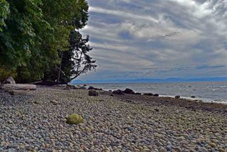Photo 12: 5147 SUNSHINE COAST Highway in Sechelt: Sechelt District House for sale (Sunshine Coast)  : MLS®# R2433280