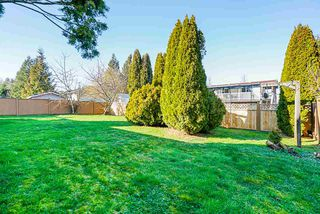 Photo 35: 27041 26A Avenue in Langley: Aldergrove Langley House for sale : MLS®# R2456716