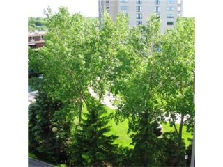 Photo 10: 160 Tuxedo Avenue in WINNIPEG: River Heights / Tuxedo / Linden Woods Condominium for sale (South Winnipeg)  : MLS®# 1003509