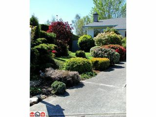Photo 9: 2161 153A Street in Surrey: King George Corridor House for sale (South Surrey White Rock)  : MLS®# F1013147
