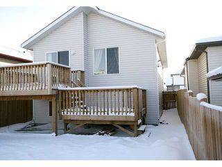 Photo 19: 125 TARACOVE Way NE in CALGARY: Taradale Residential Detached Single Family for sale (Calgary)  : MLS®# C3456094
