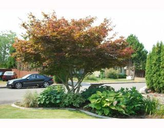Photo 8: 10631 ANAHIM Drive in Richmond: McNair House for sale : MLS®# V780272