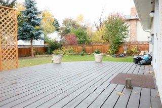 Photo 29: 14708 RIVERBEND Road in Edmonton: Zone 14 House for sale : MLS®# E4175578