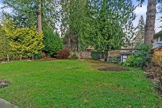 Photo 19: 12330 CARLTON Street in Maple Ridge: West Central House for sale : MLS®# R2428981