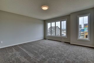 Photo 22: 9247 223 Street in Edmonton: Zone 58 House for sale : MLS®# E4193803