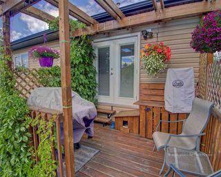Photo 39: 127 Crystal Lane: Sherwood Park House for sale : MLS®# E4206221