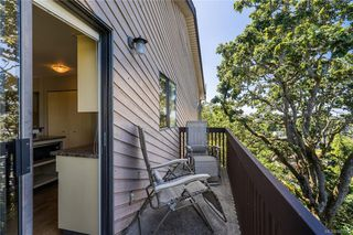 Photo 17: 950 Easter Rd in Saanich: SE Quadra House for sale (Saanich East)  : MLS®# 843512