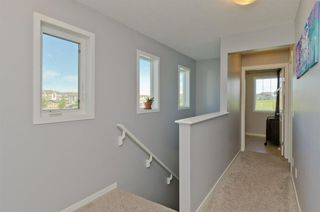 Photo 24: 160 COPPERSTONE Drive SE in Calgary: Copperfield Detached for sale : MLS®# A1016584