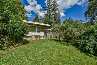 Photo 4: 2730 ASH Street in Abbotsford: Central Abbotsford House for sale : MLS®# R2507200