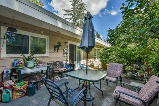 Photo 5: 2730 ASH Street in Abbotsford: Central Abbotsford House for sale : MLS®# R2507200