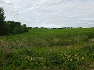 Photo 3: 52405B 24 Range Road: Rural Parkland County Rural Land/Vacant Lot for sale : MLS®# E4165756