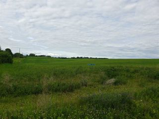 Photo 2: 52405B 24 Range Road: Rural Parkland County Rural Land/Vacant Lot for sale : MLS®# E4165756