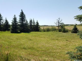 Photo 16: Dodd Acreage Rural Address in Vanscoy: Residential for sale : MLS®# SK790944