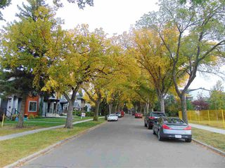 Photo 5: 14038 106 Avenue NW in Edmonton: Zone 11 Vacant Lot for sale : MLS®# E4215275