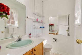 Photo 21: 36 Hawthorne Road in Mono: Rural Mono House (2-Storey) for sale : MLS®# X4962694