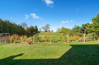 Photo 31: 36 Hawthorne Road in Mono: Rural Mono House (2-Storey) for sale : MLS®# X4962694